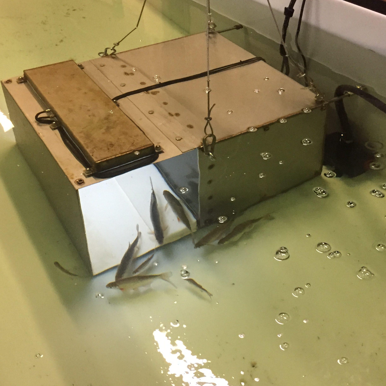 Onderwater camerabox ontworpen en geassembleerd door KBTS