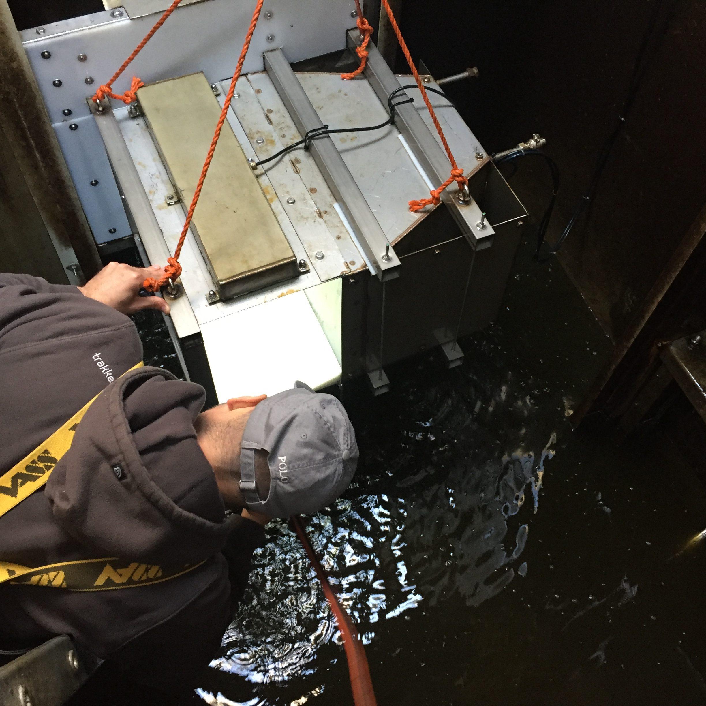Onderzoek naar vismigratie gemaal De Waker in Zaandam